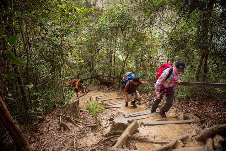 Mount Kinabalu Trail